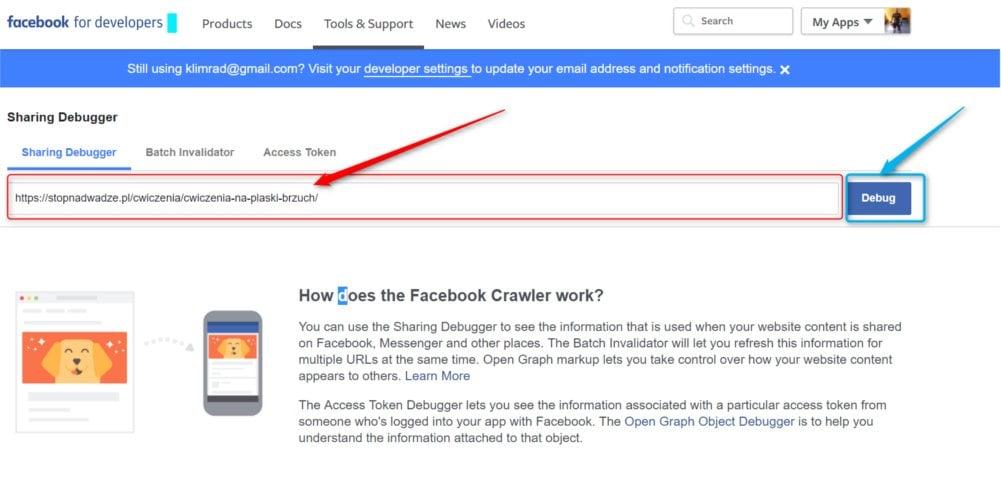 Jak wkleić link do wyczyszczenia artykuły na Facebooku.