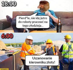 Mem z nosaczami - harować na tego złodzieja!