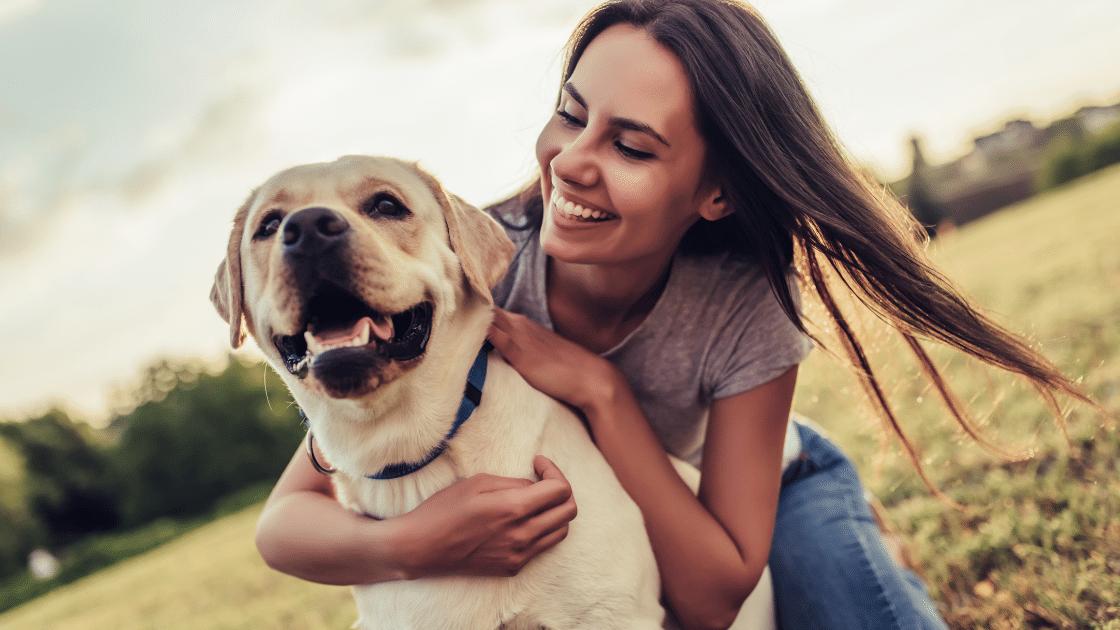 Pomysł na firmę z pasją  - opieka nad psami.